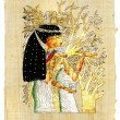 Traditional egyptiparchment — Stockfoto #12798716