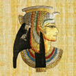 Foto de Stock  : Egyptipapyrus