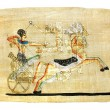 Egyptian papyrus — Stock Photo #12798781