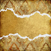 Vintage background with tattered borders — Stock Photo