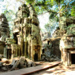 Cambodia temple. ta prohm — Stock Photo
