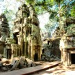 Cambodia temple. ta prohm — Stock Photo #12809933