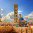 Beautiful medieval city in Tuscany Siena - view of famouse Duomo - Stock Photo