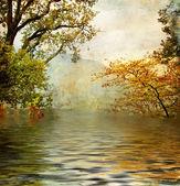 Lago dorado - fotografía artística — Foto de Stock