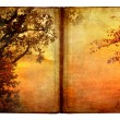 Old book with autumn nature illustration — Stock Photo