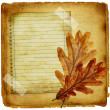 Autumn retro background with blank page and oak leaves — Stock Photo