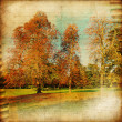 Autumn landscape - artistic picture - Stock Photo