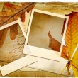 Autumn retro background with frames and leaves — Stock Photo