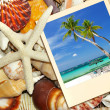 Tropical memories — Stock Photo