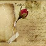 Vintage tarjeta postal romántica con marco blanco y rosa — Foto de Stock