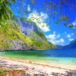 Pictorial tropical shore — Stock Photo #12821053