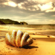 Golden tropical beach - artistic toned picture - Stock Photo
