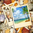 Tropical memories — Stock Photo #12821233