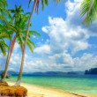 Tropical beach background — Stock Photo #12821283