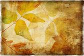 Autumn background in retro style — Foto de Stock