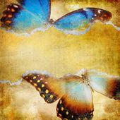 Kelebekler ile dekoratif retro arka plan — Stok fotoğraf