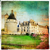 Castles of Loire valley- Chenonceau -retro series — Stok fotoğraf