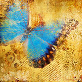 Beautiful colored abstraction with butterfly — Stock Photo