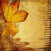 Malý domek u moře, dánsko与秋天的树叶复古纸背景 — 图库照片