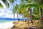 Mooie verlaten tropisch strand — Stockfoto