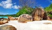 塞舌尔群岛 — 图库照片