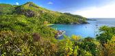 красивая сейшельских островов — Стоковое фото