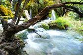 Plitvice waterfalls — Stock Photo