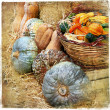 Pumpkins on market - artisitic still life in retro style — Stock Photo