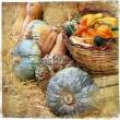 Постер, плакат: Pumpkins on market artisitic still life in retro style