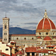 Beautiful Florence - city view with Duomo — Stock Photo #17974633