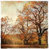 Golden autumn - artistic landscape — Stock Photo