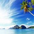 Tropical vacations — Stock Photo
