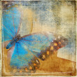 Background in grunge style with butterfly — Stok fotoğraf