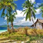 Tropical solitude — Stock Photo #18310455