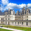 Royalty-Free Stock Photo: Beautiful Chambord castle -Loire valley