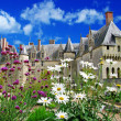 Beautiful Chambord - Loire valley castles — Stock Photo