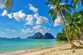 Tropical holidays — Stock Photo