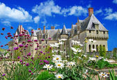 Beautiful castles of Loire valley , france — Stock Photo