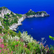 Stock Photo: Pictorial coast Amalfi coast