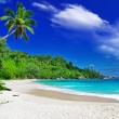 Beautiful white sandy beaches of Seychelles - Stock Photo