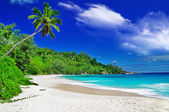 Beautiful white sandy beaches of Seychelles — Stock Photo