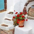 Charming small greek details. Santorini streets — Stock Photo