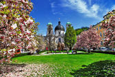 Blooming spring in Salzburg , Austria — Stock Photo