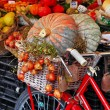 Still life with pumpkins on roman market  — Stock Photo