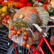 Stock Photo: Still life with pumpkins on roman market