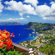 Beautiful Capri island - Italian travel series — Stock Photo #42921447