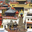 Kathmandu - Pashupatinath Temple cremation complex — Stock Photo #45851219