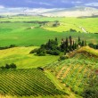Постер, плакат: Bella Italia series breathtaking landscapes of Tuscany