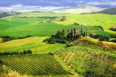 Bella Italia series - breathtaking landscapes of Tuscany — Stock Photo