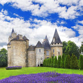 Impressive medieval castles of France, Dordogne region — Stock Photo